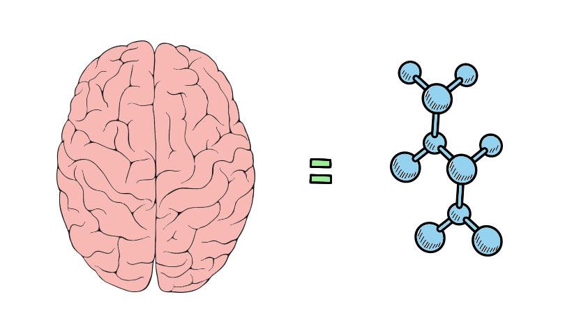 كيمياء الحب.. كيف يخدعنا الدماغ بوهم الحب ؟